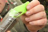 End Tackle Solidz PVA Bags - Korda_